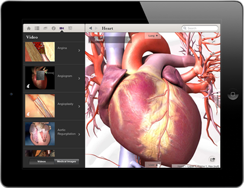 Body Maps for iPad Makes Human Anatomy Social